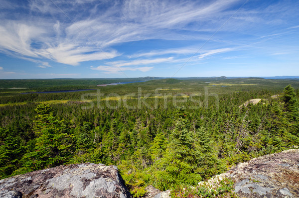 Panoramic View from a Mountain Top Stock photo © wildnerdpix