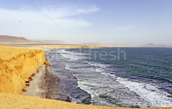 Ocean Waves on a Desert Coast Stock photo © wildnerdpix