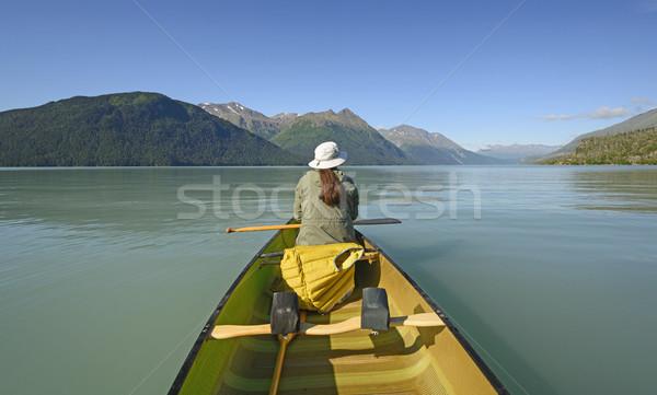 Dzień alpejski jezioro Alaska Zdjęcia stock © wildnerdpix
