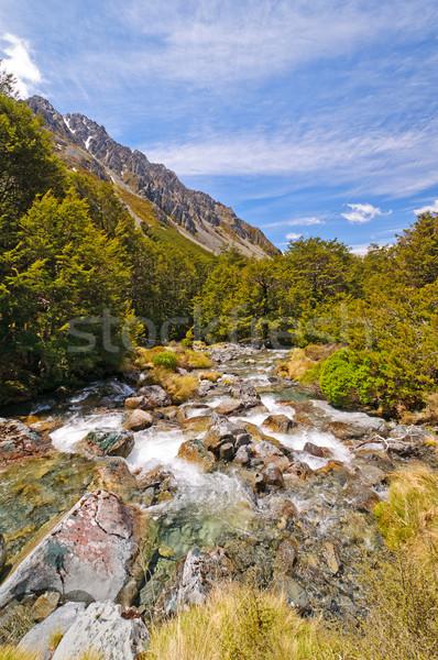 Mountain Stream in the Wilderness Stock photo © wildnerdpix