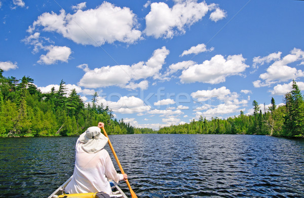 Canoer on a Lake in the North Woods Stock photo © wildnerdpix