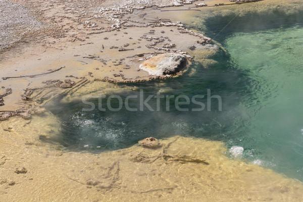 Water kleurrijk thermisch bad geiser natuur landschap Stockfoto © wildnerdpix