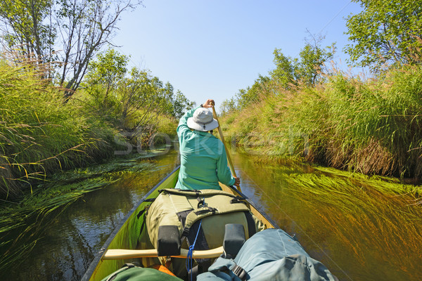 Paddling Down a Wilderness River Stock photo © wildnerdpix