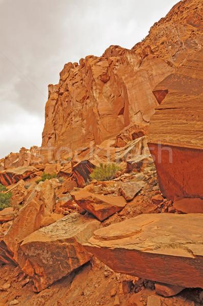 Red Rocks in a Hidden Canyon Stock photo © wildnerdpix