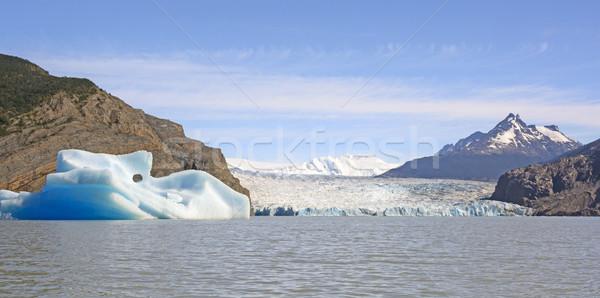 Icebergue geleira lago cinza água natureza Foto stock © wildnerdpix