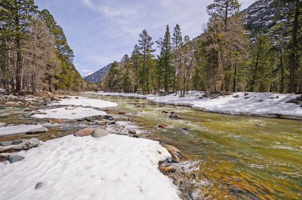 Rushing River with Winter Snowmelt Stock photo © wildnerdpix