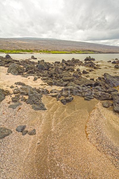 Sandy Beach and Rocks in the Galapagos Stock photo © wildnerdpix