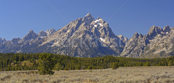 Dramático cair dia parque Wyoming montanhas Foto stock © wildnerdpix