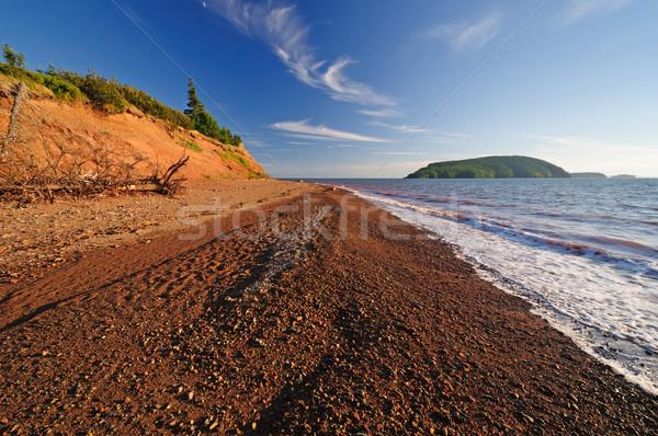 Evening colors on an ocean beach Stock photo © wildnerdpix