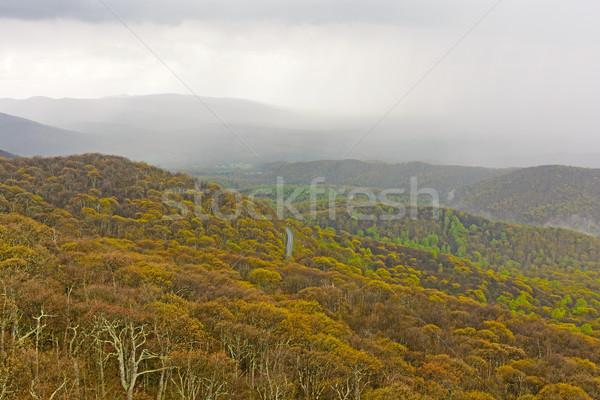 Printemps pluie tempête déplacement montagnes bleu Photo stock © wildnerdpix