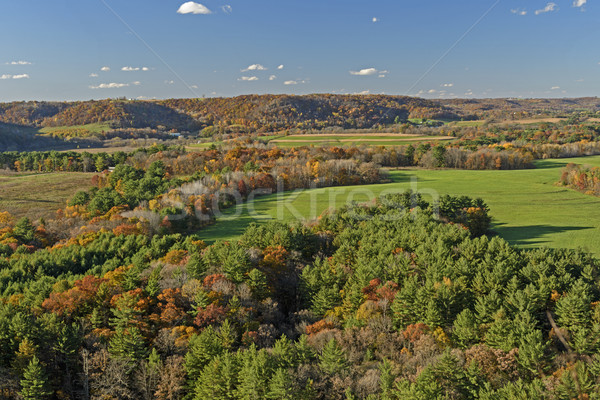 Fall  Colors on Rural Farmlands Stock photo © wildnerdpix