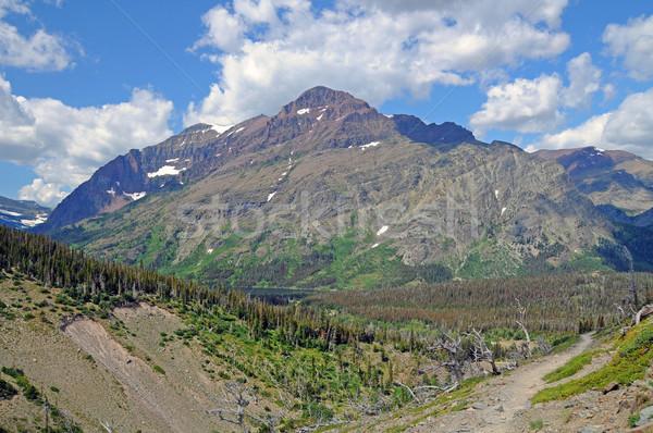 Montagna cielo lupo montagna scenico Foto d'archivio © wildnerdpix