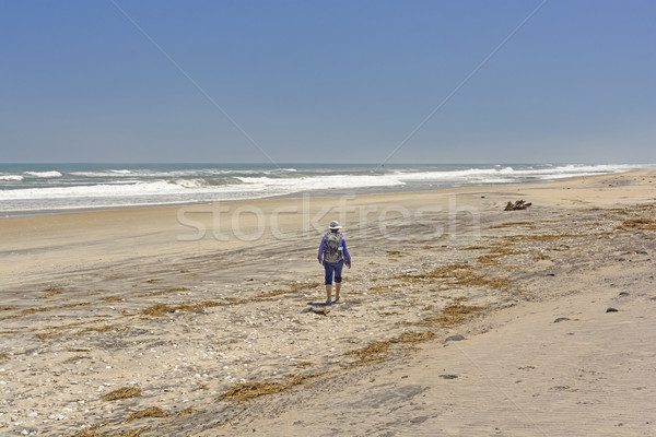 Heading out on a Remote Beach Stock photo © wildnerdpix