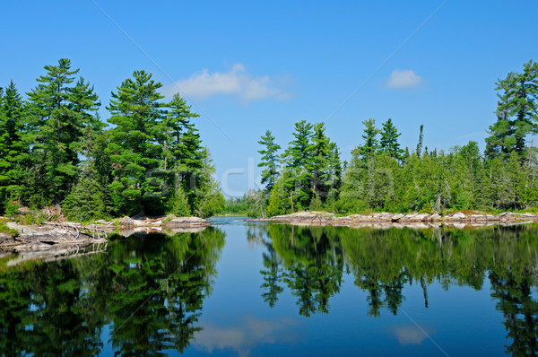 Calm waters in the Quetico Stock photo © wildnerdpix