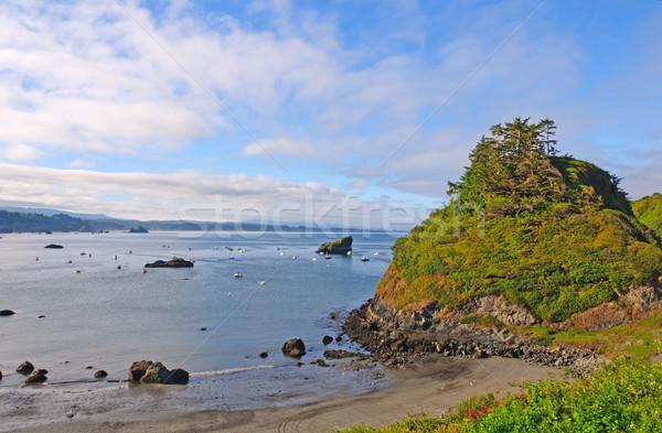Morning LIght on a Sheltered Cove Stock photo © wildnerdpix