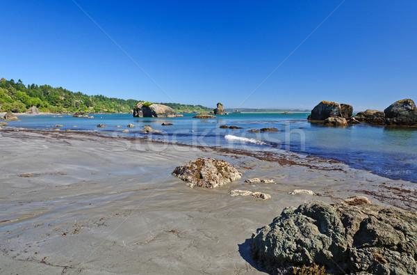 Okyanus düşük gelgit plaj su yaz Stok fotoğraf © wildnerdpix