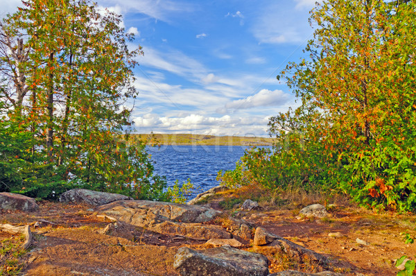 View from a Wilderness Campsite Stock photo © wildnerdpix