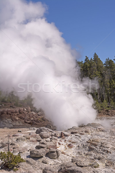 Steam From a Thermal Pool Stock photo © wildnerdpix
