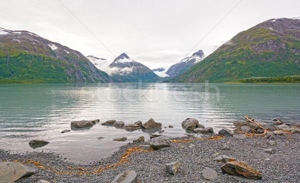 Early Morning on a Glacial Lake Stock photo © wildnerdpix