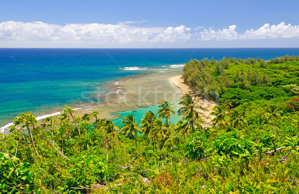 Tropical Beach and Lagoon in Hawaii Stock photo © wildnerdpix