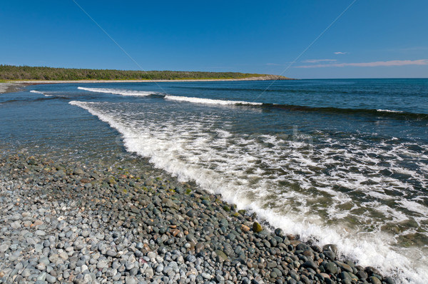 waves breaking on a cobblestone beach Stock photo © wildnerdpix