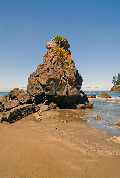 Rock Pinnacle on an Ocean Beach Stock photo © wildnerdpix