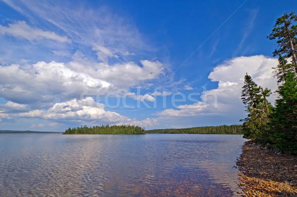 Afternoon clouds on a wilderness lake Stock photo © wildnerdpix