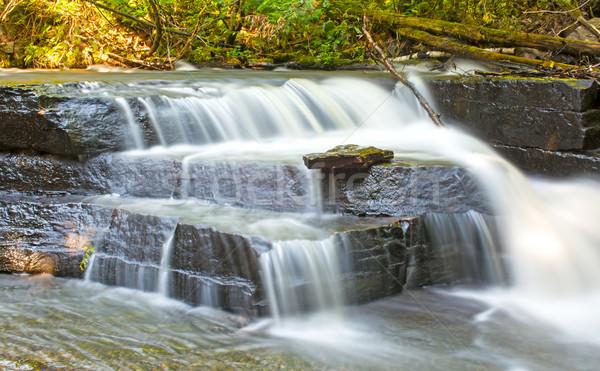 Hidden Falls in a Quiet Forest Stock photo © wildnerdpix