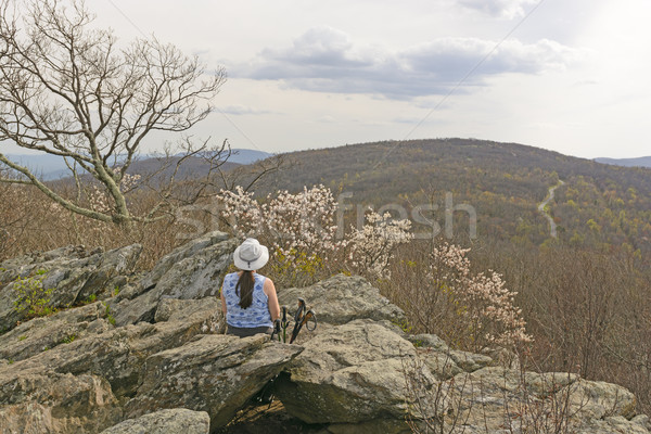 Enjoying the Early Spring Mountain View Stock photo © wildnerdpix