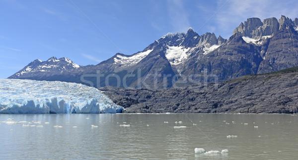 Alpine gletsjer bergen grijs water natuur Stockfoto © wildnerdpix