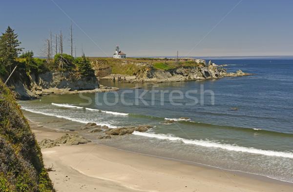 Remote LIghthouse on a Sunny Day Stock photo © wildnerdpix