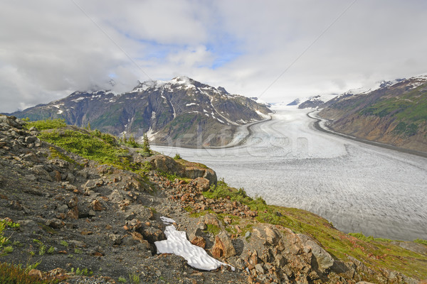 View of a Glacier from an Outcrop Stock photo © wildnerdpix