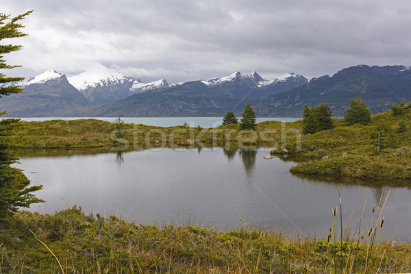 Glacial Tarn on a Remote Island Stock photo © wildnerdpix