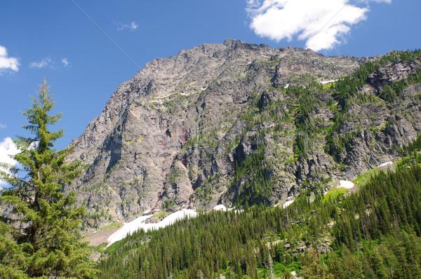 Mountain Crag in the Wilderness Stock photo © wildnerdpix