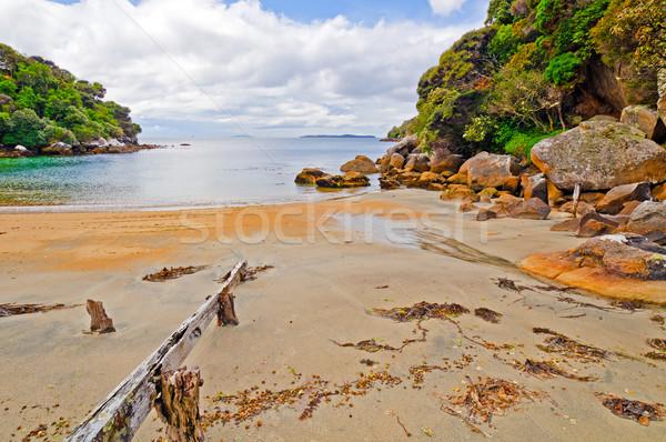 Quiet Cove on the Ocean Stock photo © wildnerdpix
