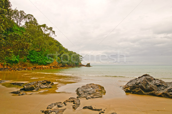 Remote Beach on a Cloudy Day Stock photo © wildnerdpix