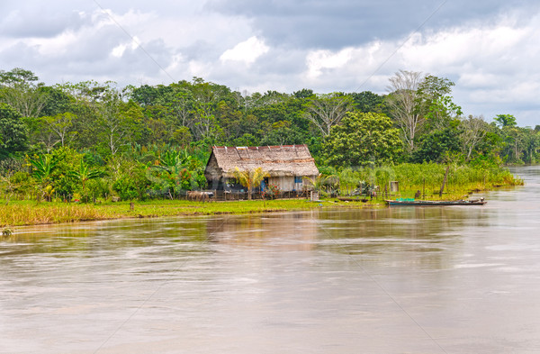 Native house along a rain forest river Stock photo © wildnerdpix