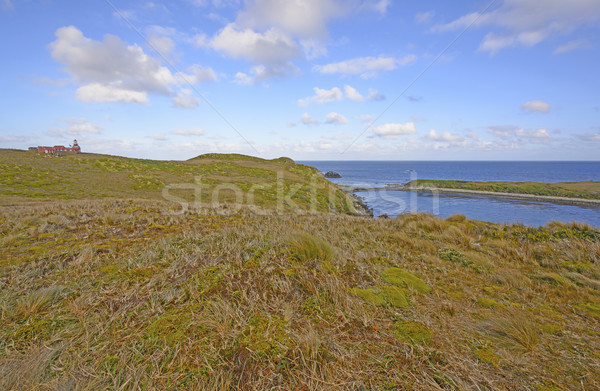 Lighthouse and Grassland at the end of the World Stock photo © wildnerdpix