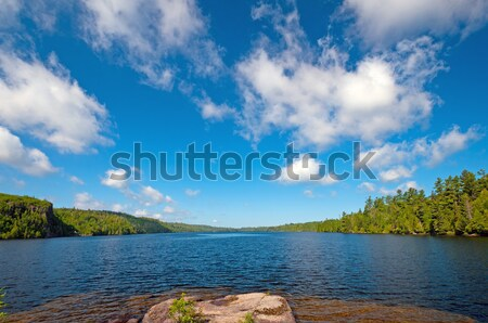 Blue and White in Canoe Country Stock photo © wildnerdpix