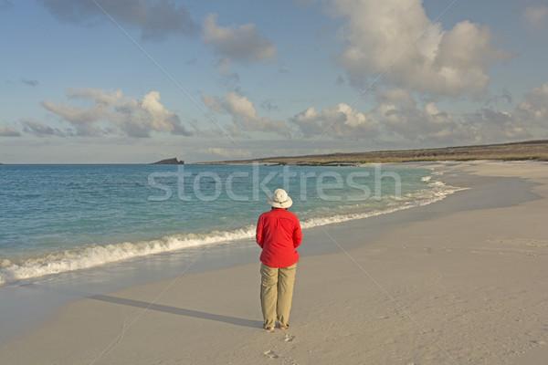 熱帯 表示 島 水 女性 ストックフォト © wildnerdpix