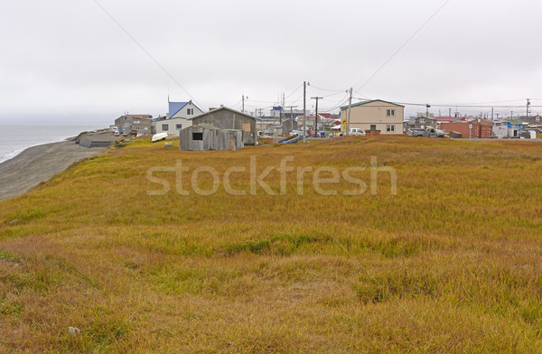 View of an Arctic Village Stock photo © wildnerdpix