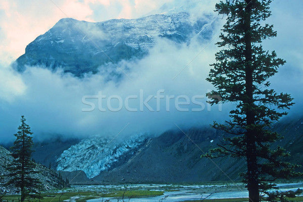 Mountain and Glacier in the Mist Stock photo © wildnerdpix