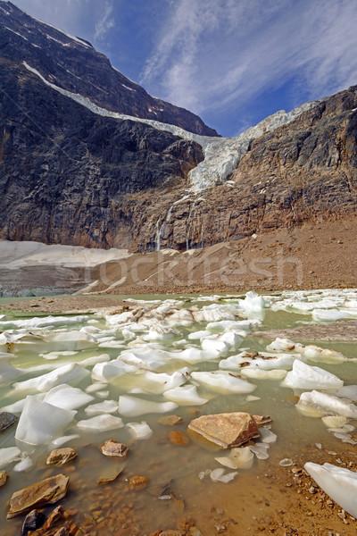 Alpine gletsjer ijs meer zomer engel Stockfoto © wildnerdpix