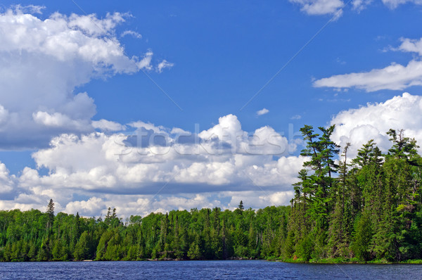 Afternoon storm clouds building in Canoe Country Stock photo © wildnerdpix