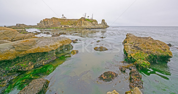 Nuageux scène faible marée côte Photo stock © wildnerdpix