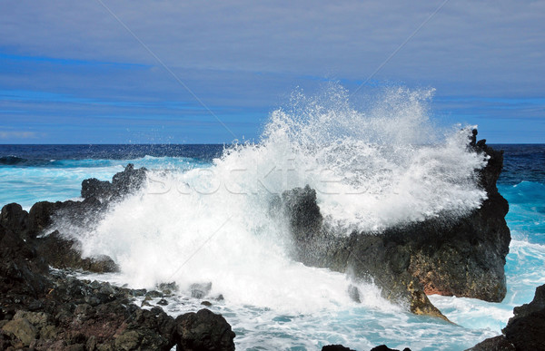 crashing waves in Hawaii Stock photo © wildnerdpix
