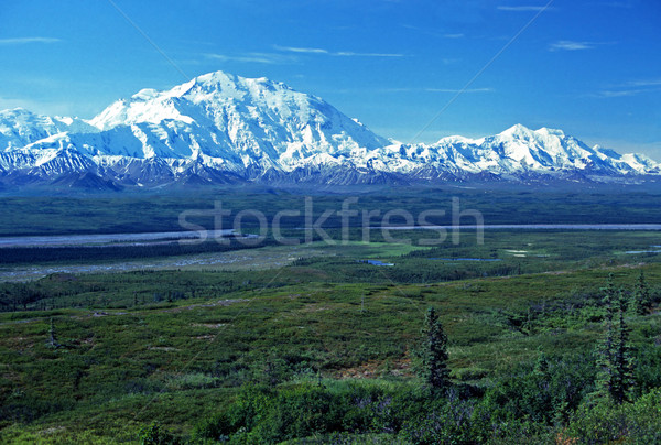 Alaska Range from across the tundra Stock photo © wildnerdpix