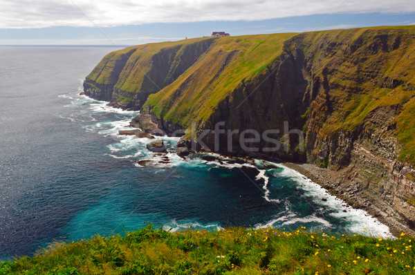 Haze and Sun on Remote Ocean Cliffs Stock photo © wildnerdpix