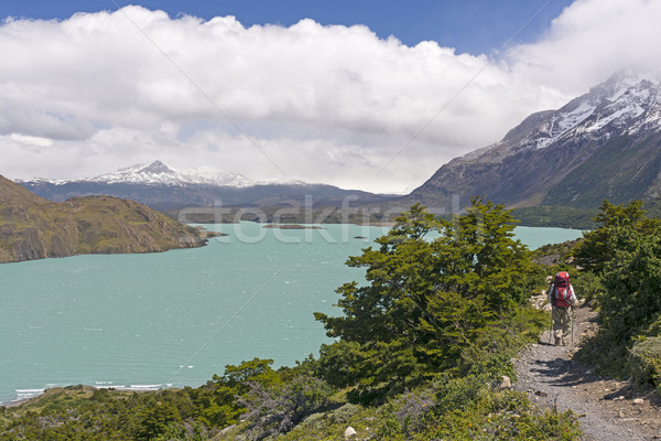 Backpacker on a Remote Trail in the Patagonian Andes Stock photo © wildnerdpix