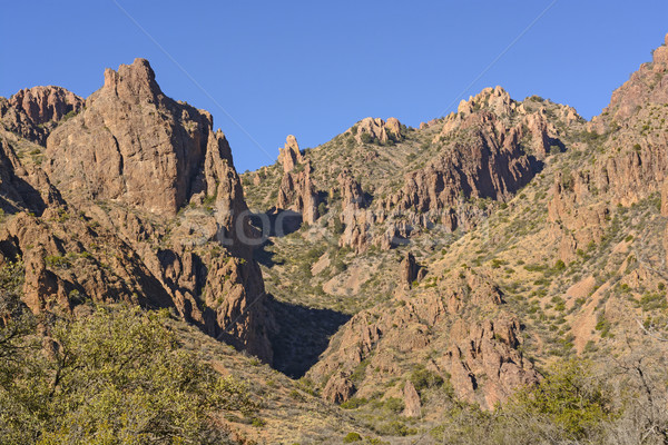 Kırmızı kayalar tepeler çöl dağlar büyük Stok fotoğraf © wildnerdpix